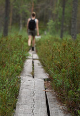 Wandern durch die Nordische Wildnis