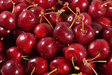 Red cherries close up
