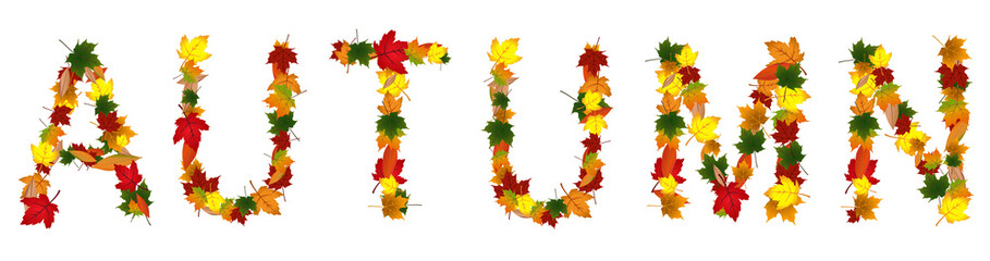 Vector format of word Autumn created from leafs