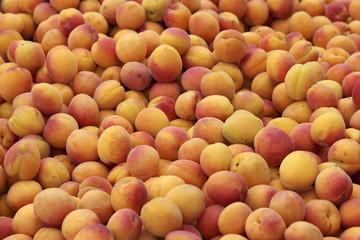 Viele Aprikosen - Marktstand