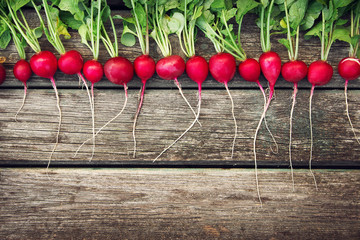 Radish on wooden background