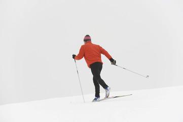 Italien,Südtirol,Mann Langlauf,Rückansicht