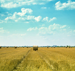 Distant hay bales on the field