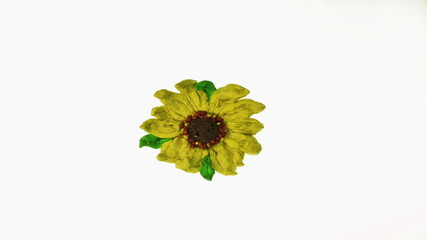 plasticine flower animation over white background