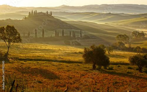 Im Nebel der Toskana