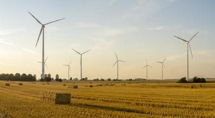 Wiatraki na na polach uprawnych w Niemczech