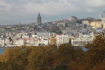 Istanbul city center covered by trees