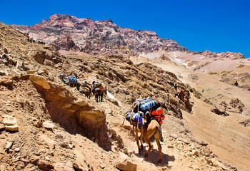 Hikers trekking in the Andes, Aconcagua National Park, Argentina