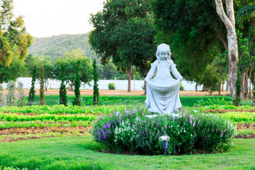 Angel statue in the garden