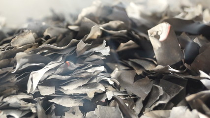 Burnt Pieces of Paper