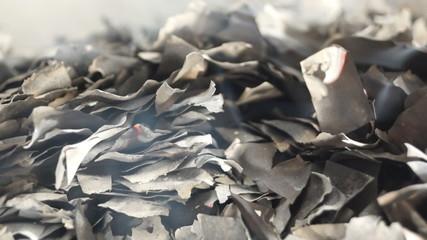 Burnt Pieces of Paper