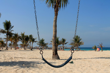 A swing in front of a palm on the beach