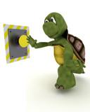 Tortoise pushing a button