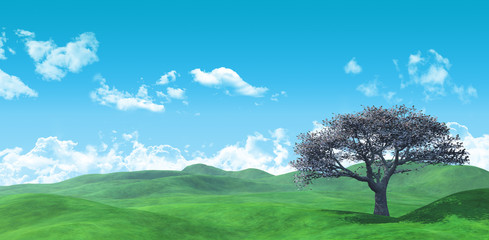3D Widescreen tree landscape