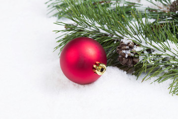 Single Red Christmas Ornament with Seasonal Fir Branch