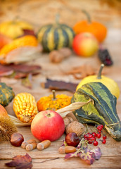 Organic autumn fruits and vegetables