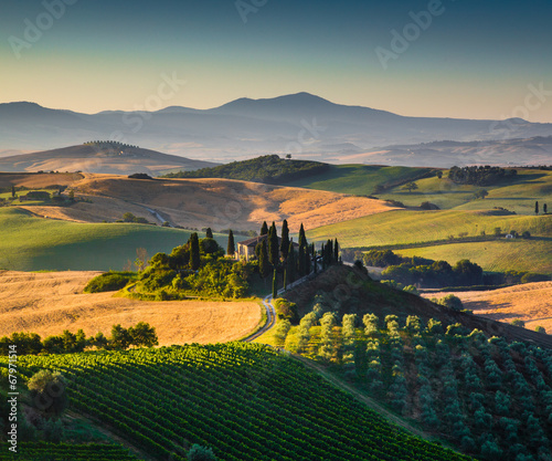 Tuscany landscape in golden morning light, Val d'Orcia, Italy - 67971514