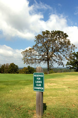 Reserved Parking For Ladies Champion At Exclusive Club