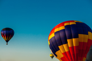 Taking Flight in a Balloon Festival