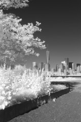 Infrared image of the Lower Manhattan from the Liberty Park