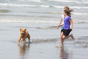 children and a dog running at the beach
