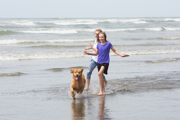 kids running at the beach with their dog