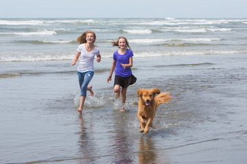 kids and dog running at the beach
