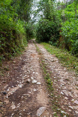 road for 4 wheel drive