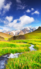 River on mountain field. Beautiful natural landscape