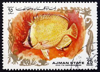 Postage stamp Ajman 1972 Tropical Fish