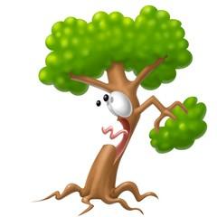 albero shok