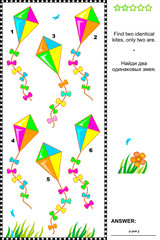 Visual puzzle - find two identical kites