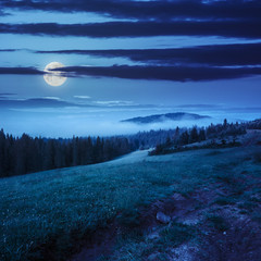 cold fog in mountain forest at night