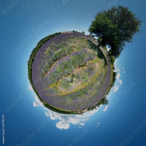 Lavendel Planet