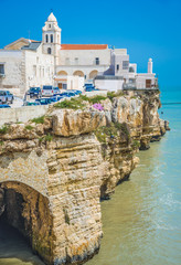 Vieste panoramic view called point San Francesco, Apulia,Italy
