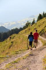 Walking through the Alpine Nature