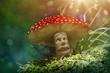Fantasy mushroom - 67999562