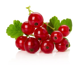 red currents isolated on the white background