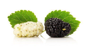 black and white mulberries isolated on the white background