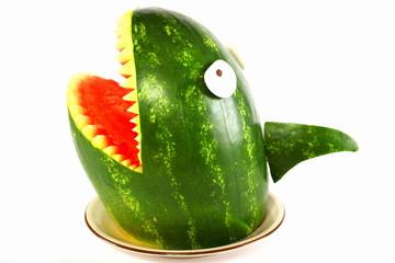 melone shark