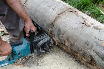 Worker with electric chainsaw