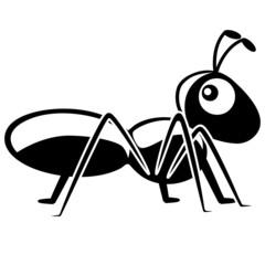 Ameise Insekt lustig süss