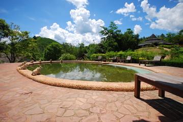 pool and beautiful nature scene