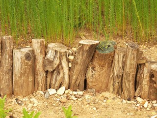 Natural wooden horizontal palisade made from natural trunk, wood