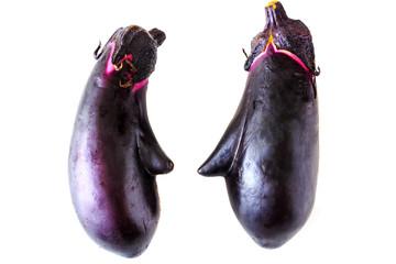 Face shaped Eggplant on white background