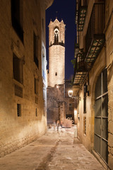 Night in the Gothic Quarter of Barcelona