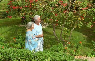 Elder couple in exotic garden