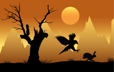 Hawk hunting hare at sunset silhouette