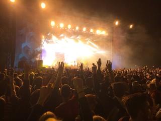 crowd at the festival havig fun