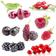 Collections of berry isolated on white background